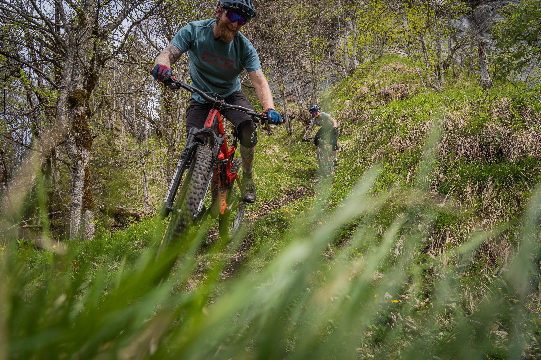 Discovery Bike Shuttle Rhine Gorge to Upper Countr