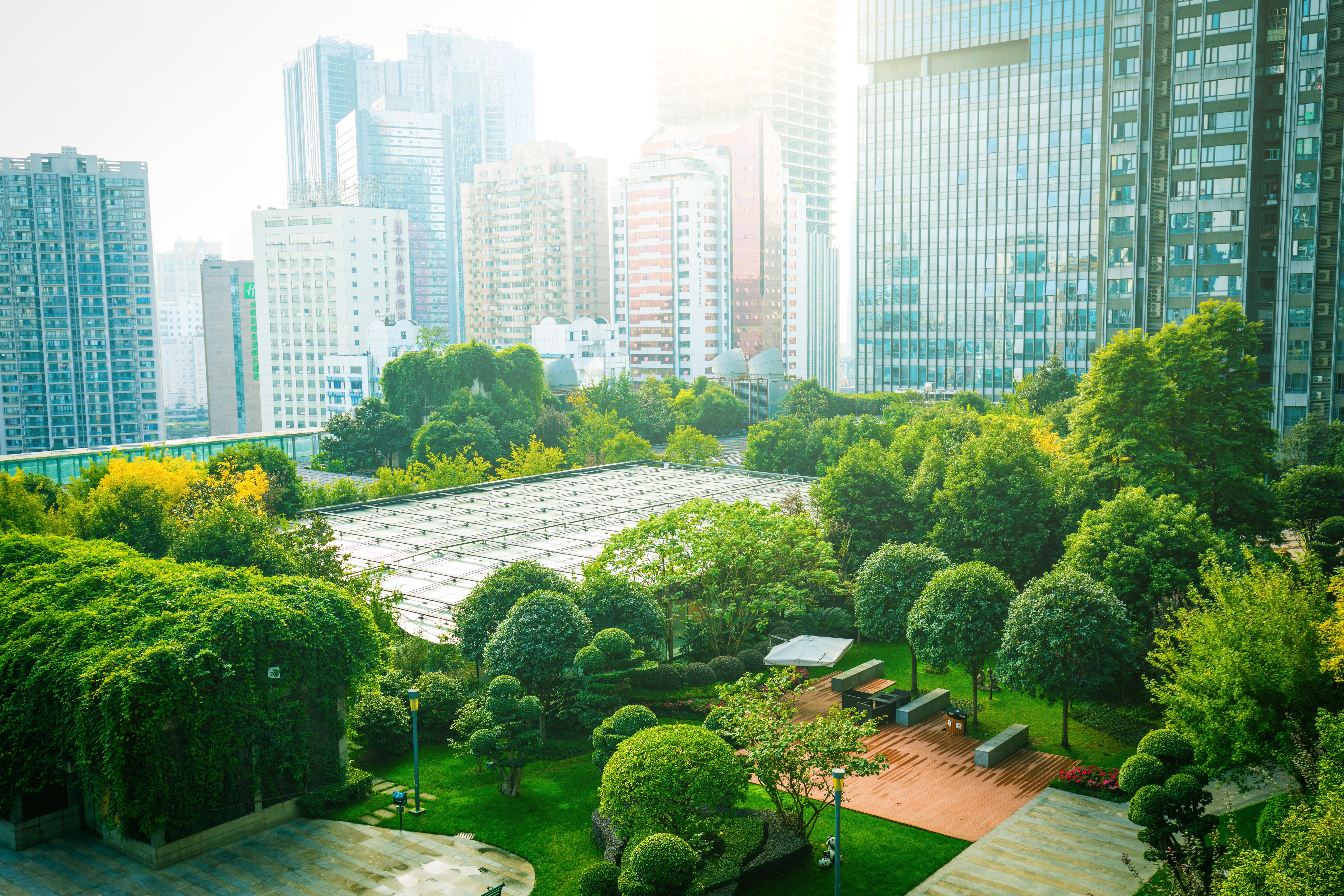 Exterior shot of a roof garden